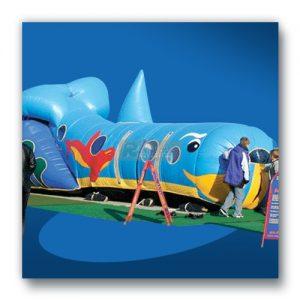 Willi der Wunderwal